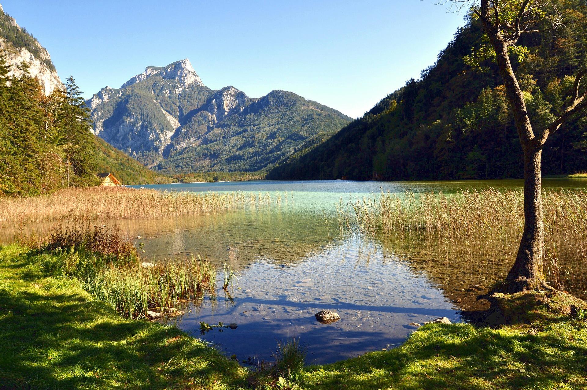 Projekt: Vision für Österreich